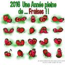 2016 année de la fraise2