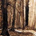 aquarelles-paysages-foret-arbre-hauton