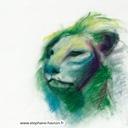 dessin-lion-pastel-sec-hauton
