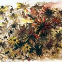 technique-aquarelle-gaillarde-fleurs-lavis-hauton