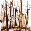 aquarelles-paysages-foret-hauton
