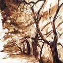 dessin-paysage-les-arbres-lavis-hauton