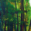 dessin-paysage-foret-verte-hauton