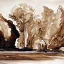 aquarelles-paysages-foret-lavis-bois-eau-hauton
