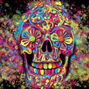 "Color your Skulz ""Illustrator"""
