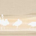 flamingos#2