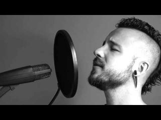 Muse - Starlight (cover by Romain Le Bihan)