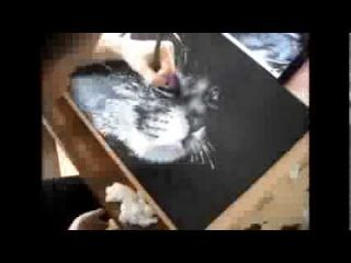 Speed drawing, Paint in progress, Painting cat, Black and white, Artwork, Peinture de chat